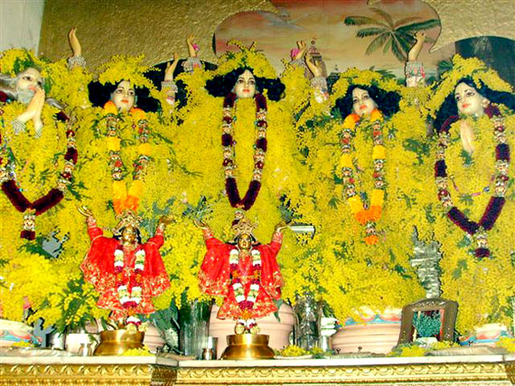 gauramandal.big