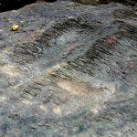 Footprints of Sri Ramachandra