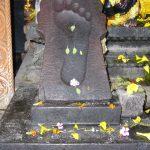 The lotus-feet of Lord Vishnu