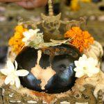 Salagram-sila worshiped by Murari Gupta (2)