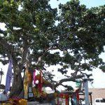 Chir Ghat, Vrindavan