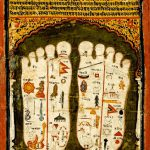 Lord Visnu's Lotus Feet
