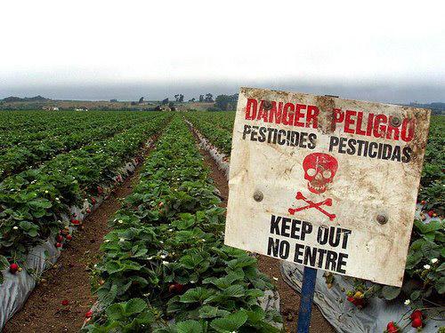 danger_pesticides