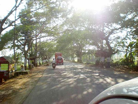 banyantree.road
