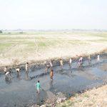 Devotees bring Yamunaji back to Vrindavan
