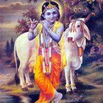 Sri Krsna Janmastami