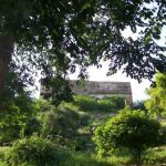 The Greening of Govardhana