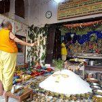 Sri Radha Damodar Anukut Mahotsav