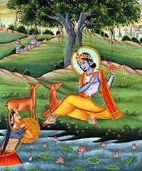 krishnayamun
