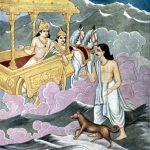 The Pandavas' Dog