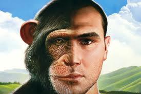 chimpman