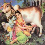 Cream for Krishna