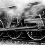 Vrindavana Express and the Navadvipa Special