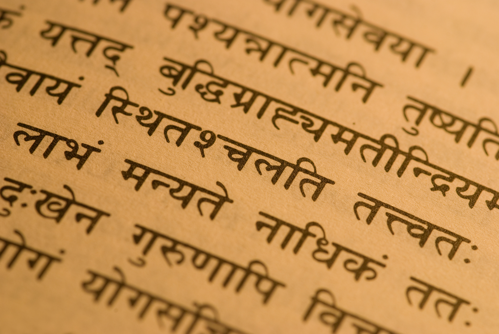 indian village where people speak in sanskrit vina