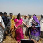Hema prefers to help farmers, postponed the Mathura Mahotsava