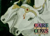 careforcows