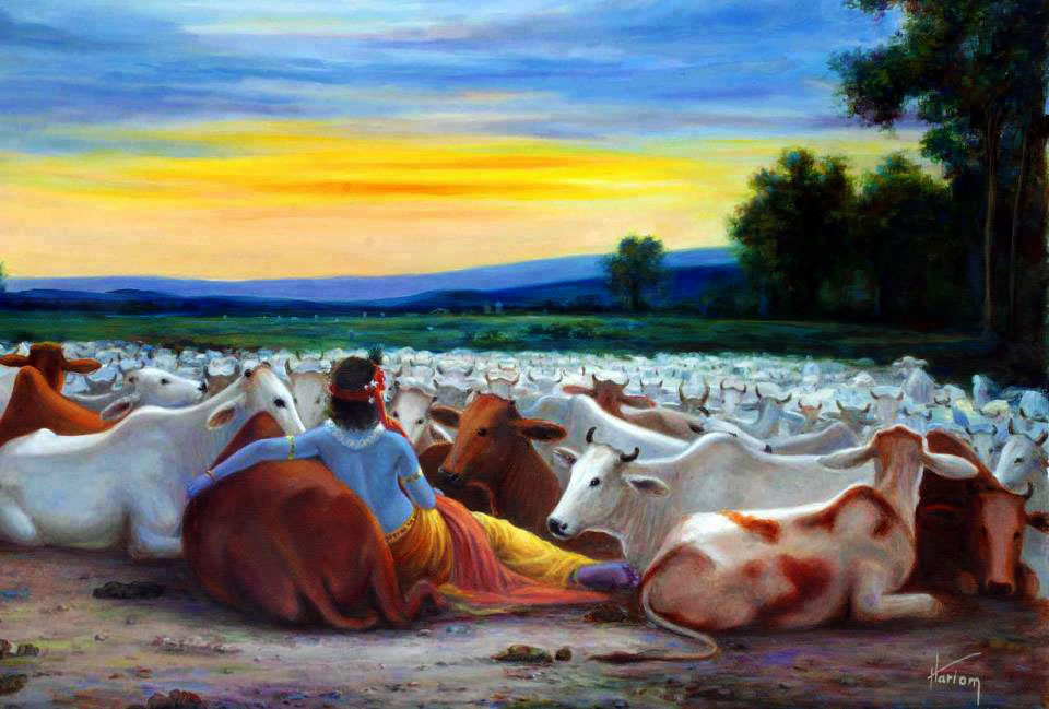Krsna_with_cows_evening