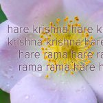 What's So Special About Chanting Hare Krishna?
