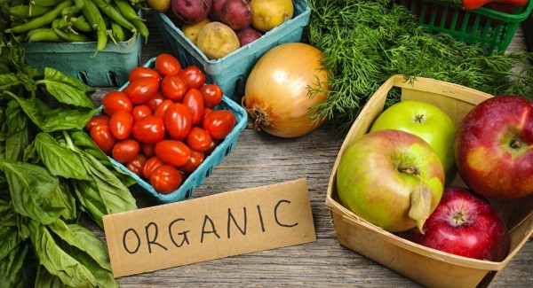 Organicfood_large