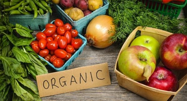 Organicfood_large