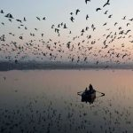 A love song from Yamuna: The tale of Ras Khan and his poetry