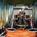 Shri Radha Gopinath Ji's amavasya darshan