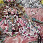 Shri Radha Vallabh shringar darshan