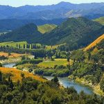 New Zealand Grants a River the Rights of Personhood