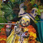 Sri Sri Radha Mohan, Munger Mandir Vrindavan