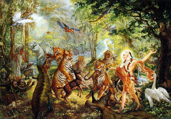 The transcendental sound coming from Sri Chaitanya made the animals dance in the forest
