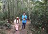 gopananda bon maharaja bamboo forest